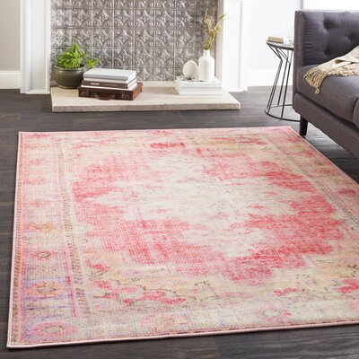 Almon Distressed Bright Pink/Pale Pink Area Rug