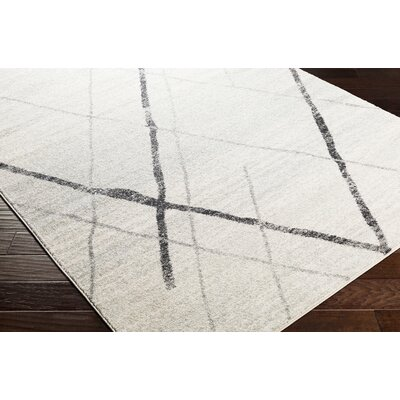 Kreutzer Distressed Charcoal/Light Gray Area Rug Rug Size: Runner 27 x 76
