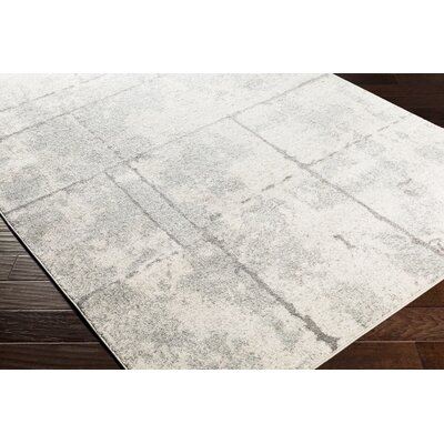 Cateline Distressed Light Gray/Taupe Area Rug Rug Size: Runner 27 x 76