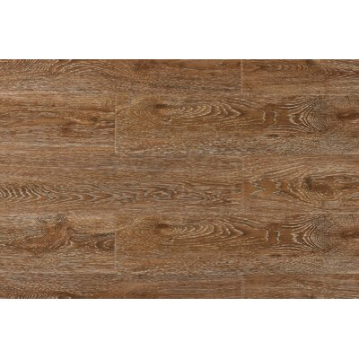 Archard 7 x 48 x 12mm Oak Laminate Flooring in Champagne