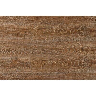 Archard 7 x 48 x 12mm Oak Laminate Flooring in Champagne