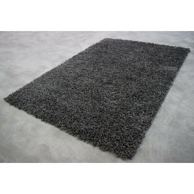 Filton Dark Gray Area Rug Rug Size: Rectangle 4 x 6