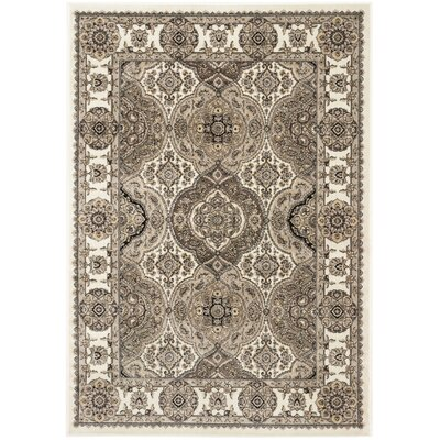 Maoli Ivory/Brown Area Rug Rug Size: Rectangular 53 x 76