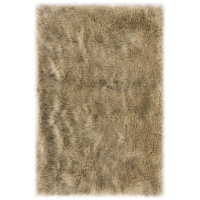 Bilberry Brown Area Rug Rug Size: Rectangular 2 x 3