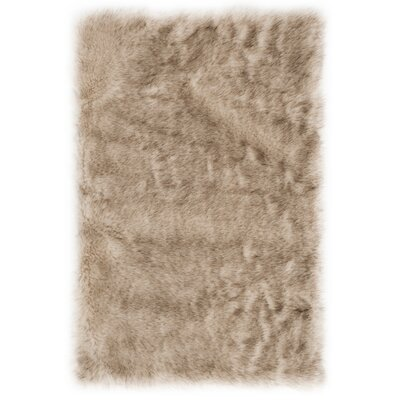 Bilberry Beige Area Rug Rug Size: Rectangular 2 x 3