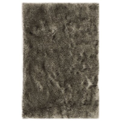 Bilberry Black Area Rug Rug Size: Rectangular 3 x 5