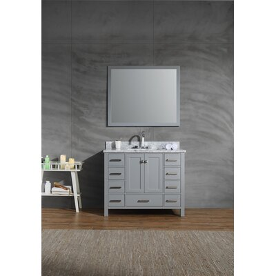 Harewood 43 Single Bathroom Vanity Set with Mirror Base Finish: Gray