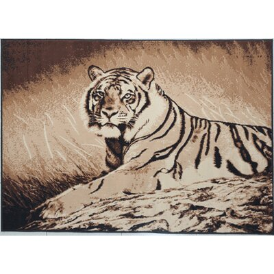 Dicken Black Area Rug Rug Size: Rectangle 53 x 72