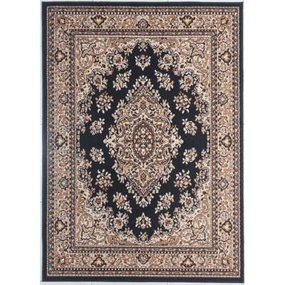 Haith Black/Brown Area Rug Rug Size: Rectangle 53 x 72