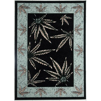 Tallman Black/Duck Egg Blue Area Rug Rug Size: Rectangle 711 x 910