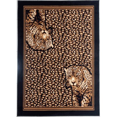 Detrick Brown Area Rug Rug Size: Rectangle 53 x 72