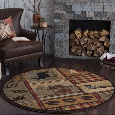 Alers Brown Area Rug Rug Size: Round 6