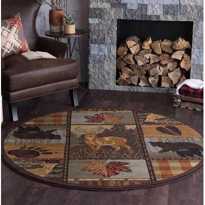 Alers Brown Area Rug Rug Size: Round 8
