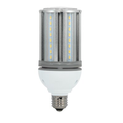 E26/Medium LED Light Bulb Wattage: 22W, Bulb Temperature: 5000K, Voltage: 277V