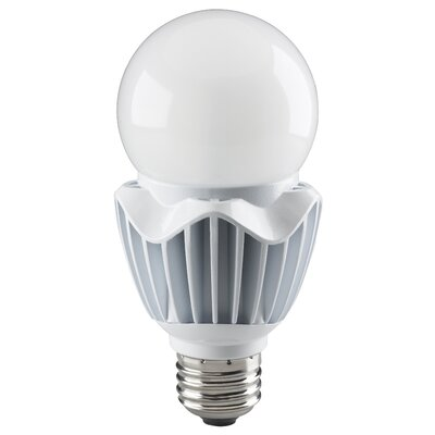 20W E26/Medium LED Light Bulb Bulb Temperature: 2700K, Voltage: 277V