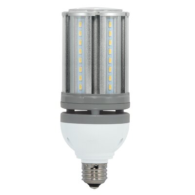 18W E26/Medium LED Light Bulb