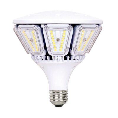 40W E26/Medium LED Light Bulb