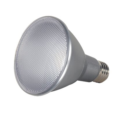 13W E26/Medium LED Light Bulb Bulb Temperature: 2700K, Beam Angle: 25