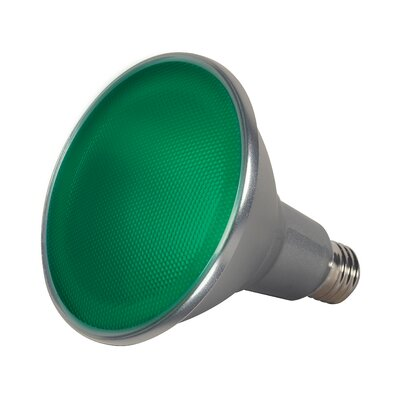15W E26/Medium LED Light Bulb Color: Green