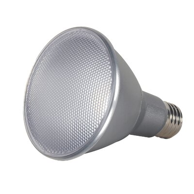 13W E26/Medium LED Light Bulb