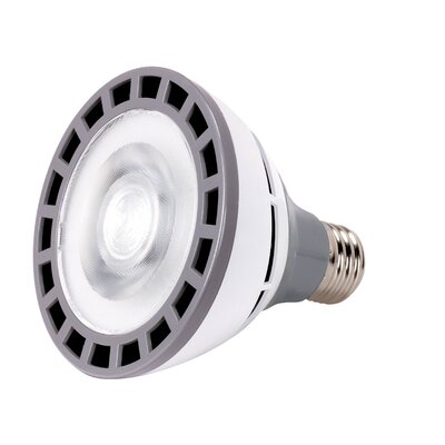 12W E26/Medium LED Light Bulb Bulb Temperature: 4000K