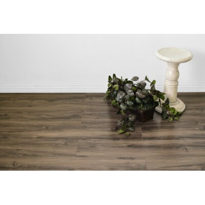 Kayson 8 x 48 x 12mm Oak Laminate Flooring in Brown
