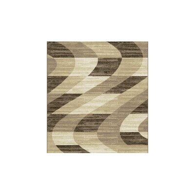 Woollard Brown Area Rug Rug Size: Runner 2 x 72