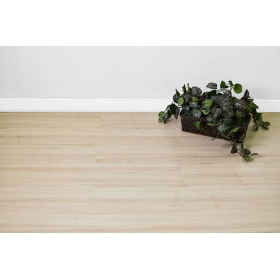 Smooth 8 x 48 x 8mm Maple Laminate Flooring in Beige