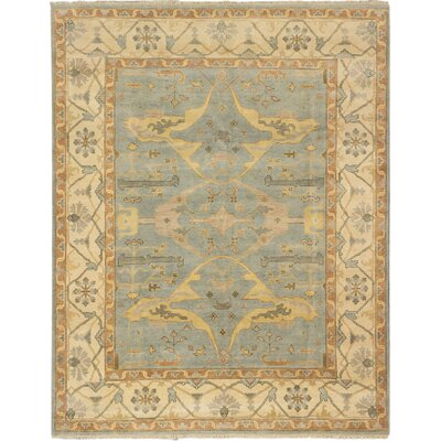One-of-a-Kind Li Hand Knotted Wool Light Blue Area Rug