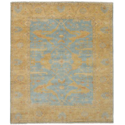 One-of-a-Kind Li Hand Knotted Wool Sky Blue Area Rug