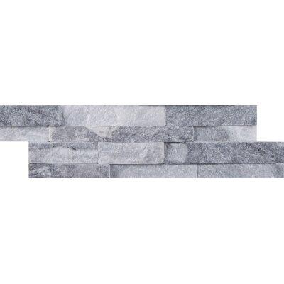 Alaska Mini Ledger Panel Marble Splitface/Mosaic Tile in Gray