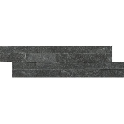 Coal Canyon Mini Ledger Panel Quartzite Natural Stone Splitface/Mosaic Tile in Black