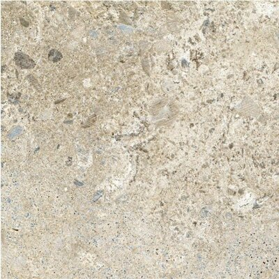 Planets Saturn Glazed 6 x 6 Porcelain Field Tile in Beige