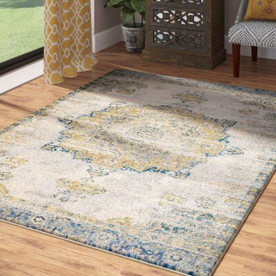 Amy Royal Medallion Gray Area Rug Rug Size: 36 x 5