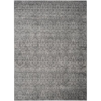 Vishnu Dark Gray / Light Grey Area Rug Rug Size: Rectangle 8 x 11