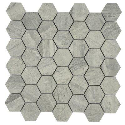 Modern Hexagonal Deep Marble Tile in Gray