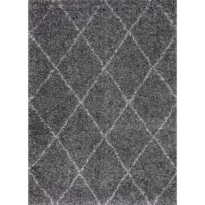Coronel Gray Area Rug Rug Size: Rectangle 4 x 6