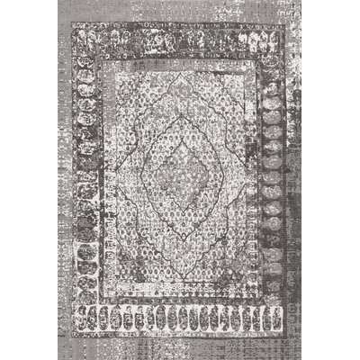 Charlie Cotton Gray Area Rug Rug Size: Rectangle 76 x 96