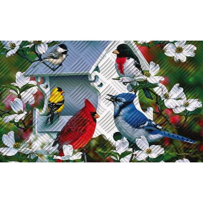 Borrero Backyard Birds Embossed Doormat