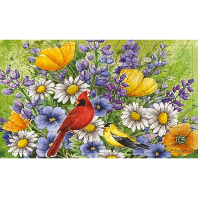 DeLussey Oriole and Cardinal Embossed Doormat