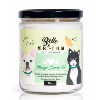 Pet Odour Eliminator Candle - Mango Berry Tea B1301