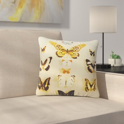 The Butterfly Collection Photography Outdoor Throw Pillow Size: 16 H x 16 W x 5 D