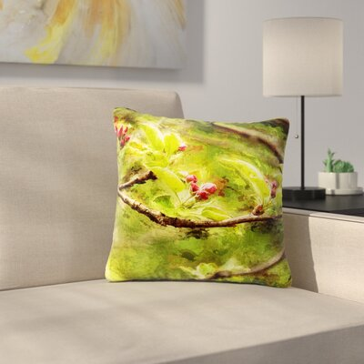 Ginkelmier Painted Apple Blossom Branch Photography Outdoor Throw Pillow Size: 16 H x 16 W x 5 D