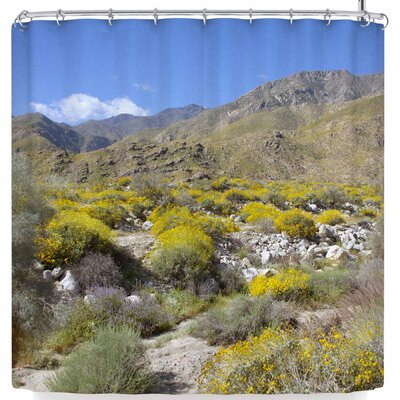 Nick Nareshni Desert Colors Shower Curtain
