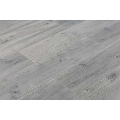 Trini 6.7 x 48 x 12mm Oak Laminate Flooring in Ultra Gray