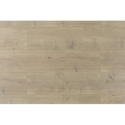 Trini 6.7 x 48 x 12mm Oak Laminate Flooring in Ultra Taupe