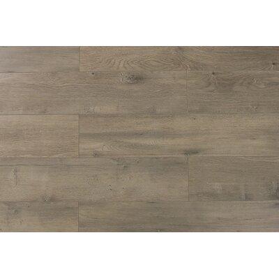 Trini 6.7 x 48 x 12mm Oak Laminate Flooring in Ultra Century