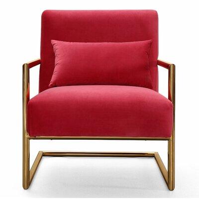 Deeksha Velvet Armchair Upholstery: Pink