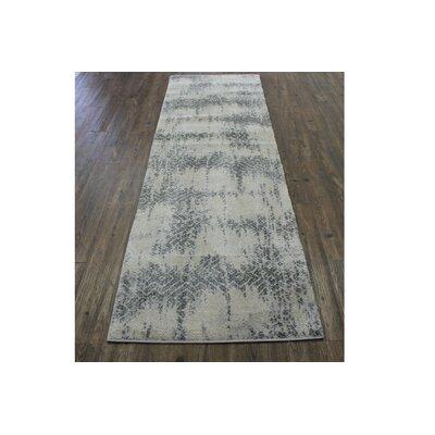 Duong Hallway Gray/Silver Area Rug