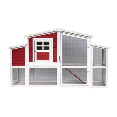 Barn Style Wooden Chicken Coop with Roosting Bar